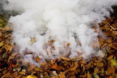 leaf-burning